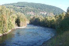 image of river with  tree covered hill in background