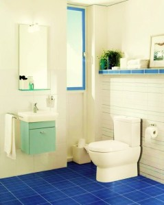 image of bathroom with low flow toilet and tap