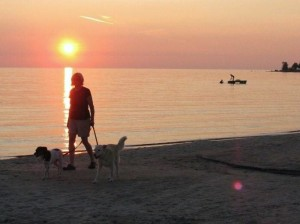 image of woman walking with 2 dogs on leashes along the beach at sunset