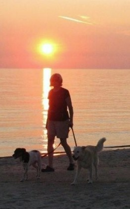 image of woman walking with 2 dogs on beach at sunset