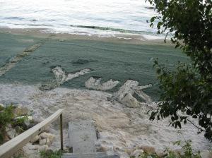 Algae on beach at Lake Winnipeg