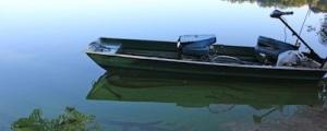 Algae on Long Island waterway