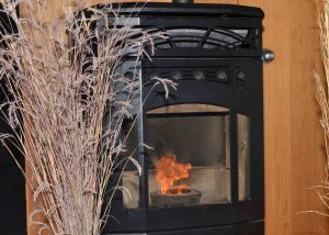 Pellet Stove Burning photo courtesy of IISD