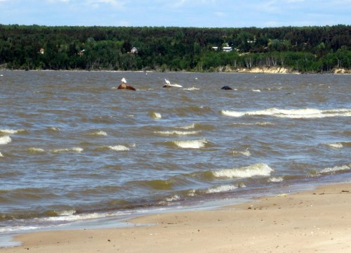 Grand Beach, Lake Winnipeg June 2014