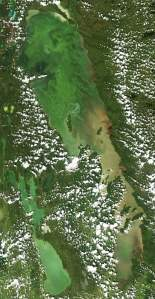 Lake Winnipeg blue-green algae in satellite photo from NASA